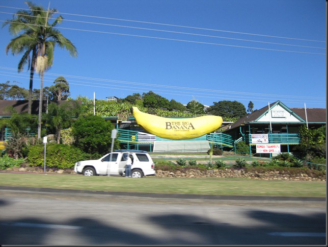 aussie roadtrip 7 the big banana coffs harbour