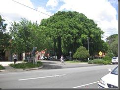 MONTVILLE main street (18)