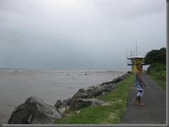 Noosa Main Beach (13)