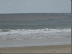 Noosa Main Beach (14)