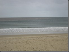 Noosa main beach (6)