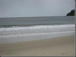 Noosa main beach (7)