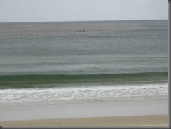 Noosa main beach (9)