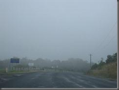 Picton NSW (4)