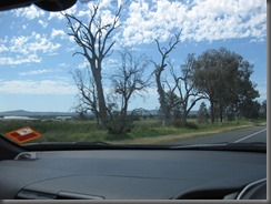 Hume Hwy (7)