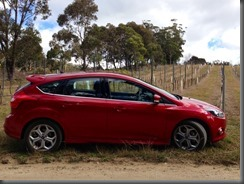 2013 Ford Focus S southern highlands NSW (2)