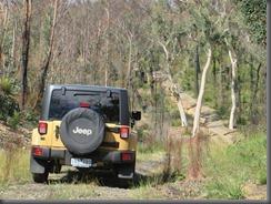 Jeep Freedom (1)