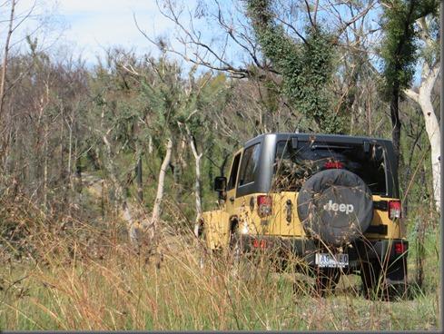 Jeep Freedom (3)