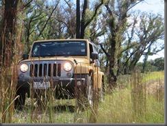 Jeep Freedom (4)