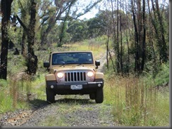 Jeep Freedom (6)