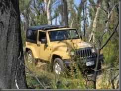 Jeep Freedom (9)
