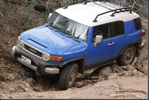 2011 FJ Cruiser gaycarboys (8)