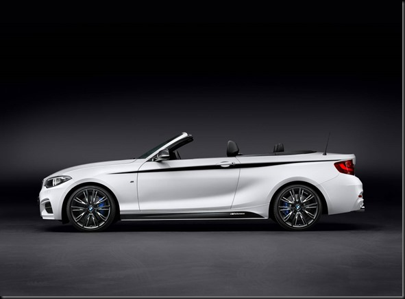 BMW M Performance Parts for the BMW 2 Series Convertible gaycarboys (1)