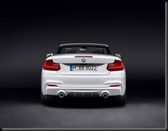 BMW M Performance Parts for the BMW 2 Series Convertible gaycarboys (2)