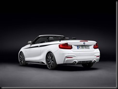 BMW M Performance Parts for the BMW 2 Series Convertible gaycarboys (3)