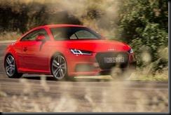 Audi TT S Line gaycarboys (14)
