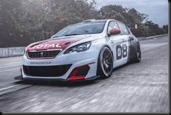 Peugeot 308 Racing Cup gaycarboys (4)