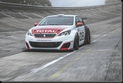 Peugeot 308 Racing Cup gaycarboys (5)