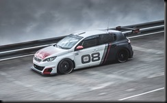 Peugeot 308 Racing Cup gaycarboys (7)