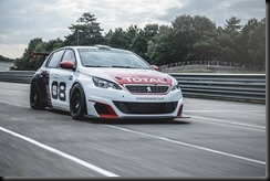 Peugeot 308 Racing Cup gaycarboys (9)