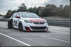 Peugeot 308 Racing Cup gaycarboys (9)