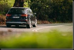 Audi Q7 3.0 TDI 200kW gaycarboys (1)