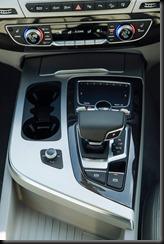 Audi Q7 3.0 TDI 200kW gaycarboys (5)