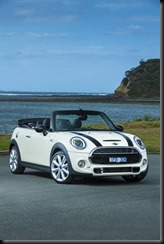 MINI Cooper S Convertible - 2016 gaycarboys (1)
