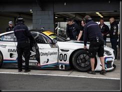 European ace lends a hand to BMW Team SRM gaycarboys (4)