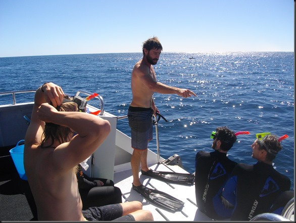 Crew member Todd instructs novice divers in the fine arts of meeting a really big fish