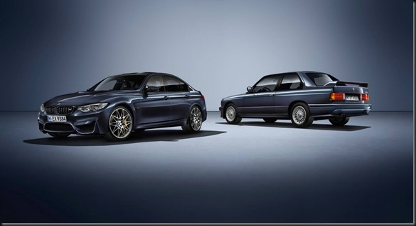 BMW M3 30 Years M3 GayCarBoys (4)