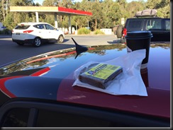 afternoon tea pacific hwy day 5 308 GTI 270 gaycarboys