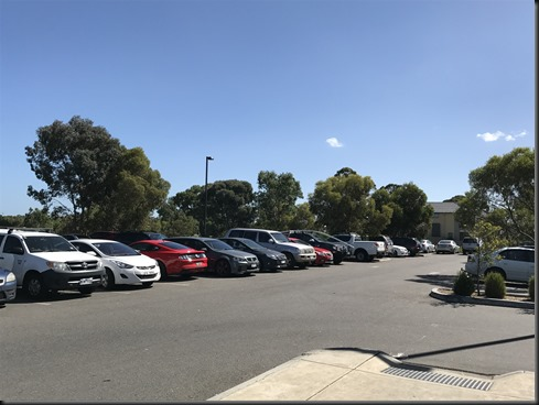 Mustang stands out in a car-park