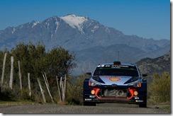 Hyundai- Motorsport  -victory -Tour -de -Corse (2)