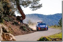 Hyundai- Motorsport  -victory -Tour -de -Corse (3)