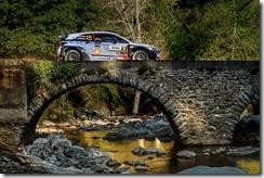 Hyundai- Motorsport  -victory -Tour -de -Corse (4)
